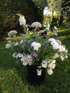 Summer-white-flowers-bucket