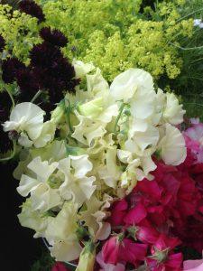 Summer-Jo-Malone-flowers